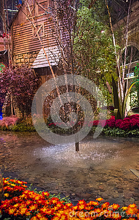 Bellagio Hotel Conservatory & Botanical Gardens Editorial Photo