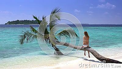 Belle jeune femme mince appréciant des vacances sur une plage tropicale Mouvement lent banque de vidéos