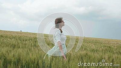 Belle jeune fille russe parmi les ?pillets verts grands du bl? dans le domaine Elle rassemble des ?pillets par paquets L'enj de f clips vidéos