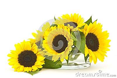 Bello mazzo del girasole in vaso di vetro immagini stock for Disegni e prezzi del mazzo