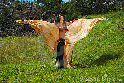 Belly dancer with wings