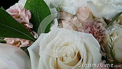 Belo buquê delicado de Bridal em cores brilhantes Rosas de Bush, rosas grandes, hydrangea e outras flores Cor clara do Pastel video estoque