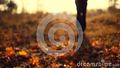 Bemannen Sie das Rütteln im Herbstpark, der auf trockene Blätter in der Zeitlupe tritt Männliche Füße, die an der Natur laufen Ke stock footage