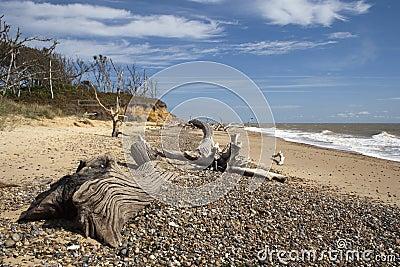 Benacre Beach, Suffolk, England