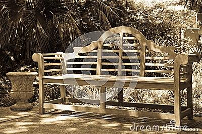 Bench at the Alamo