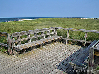 Bench at Cape Cod