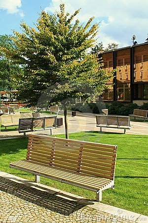 Bench in the city park