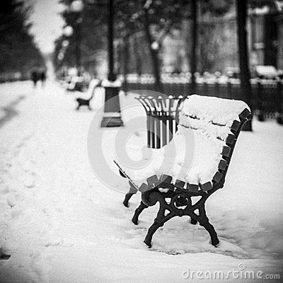 Free Bench, Covered With Snow, The City Royalty Free Stock Photos - 55251168