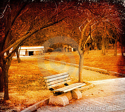 Bench in the fall