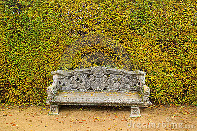 Bench garden background