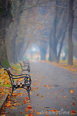 Free Bench In A City Park Stock Image - 3863171