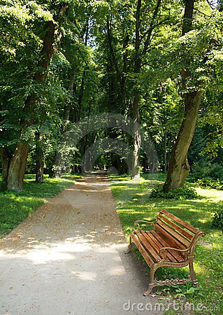 Free Bench In A Park Royalty Free Stock Photos - 13737658