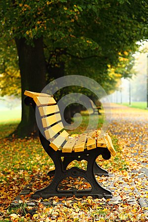 Free Bench In The Autumn Stock Images - 38575054