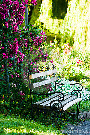Free Bench In The Garden Royalty Free Stock Image - 7213836