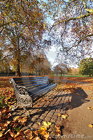 Free Bench In The Park Stock Images - 22235764