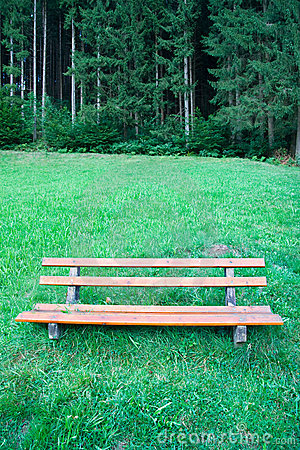Bench in a nature park