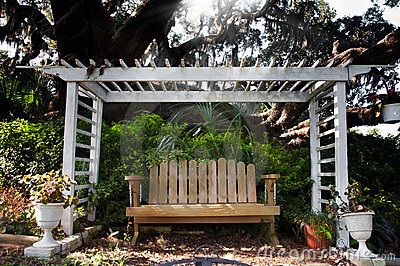 Bench with oak tree