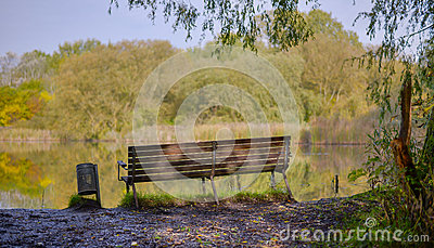 Bench overlooking a lake