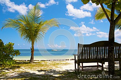 Bench at a paradise beach