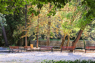 Bench and park