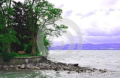 Bench_in_park_near_lake