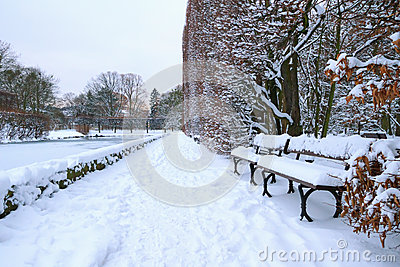 Bench in the park at snowy winter