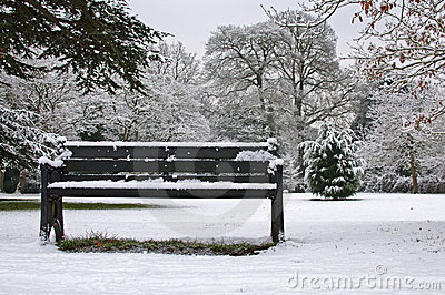 Bench in the Snow