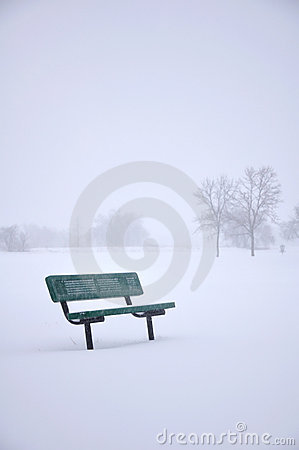 Bench in snowy park