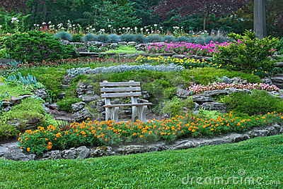 Bench in a summer garden with blooming flowers