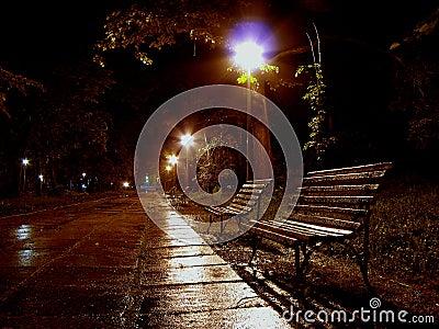 A bench to rain