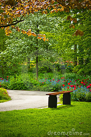 Free Bench Under A Tree With Flowers In A Park Royalty Free Stock Image - 14857596