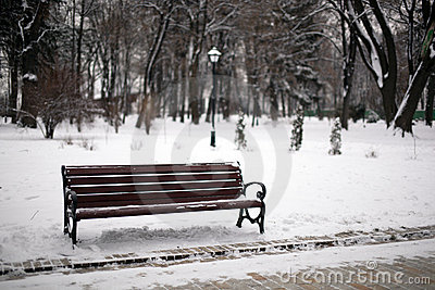 Bench in winter park with a lantern