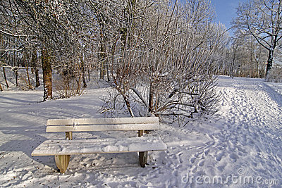 Bench in winter in the spa garden