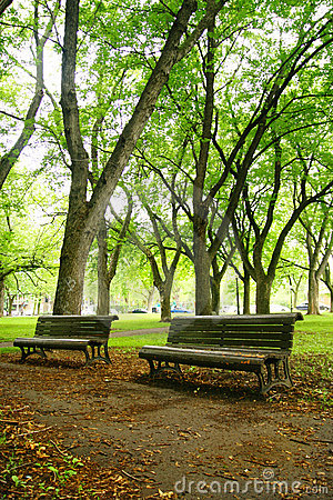 Free Benches Stock Photography - 14695322
