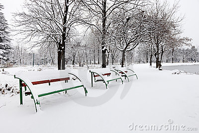 Benches in a city park covered with snow