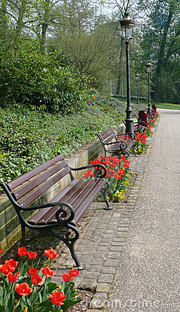 Benches and flower in park