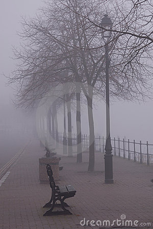 Benches in the fog