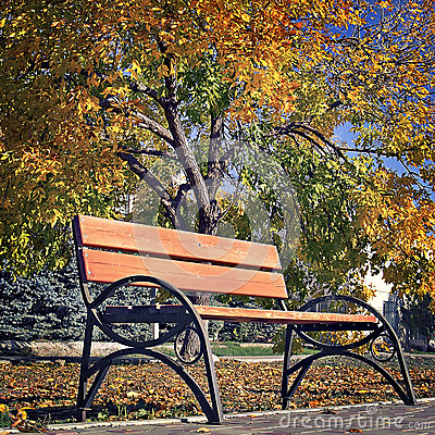 Free Benches For Rest In The Autumn Park Stock Images - 52025444