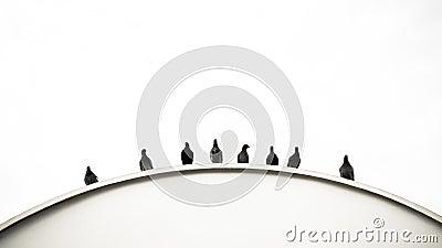 Bend of Pigeons