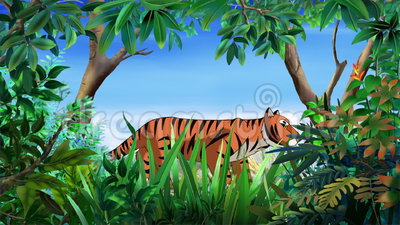 Bengal Tiger Walks Through the Jungle stock video footage
