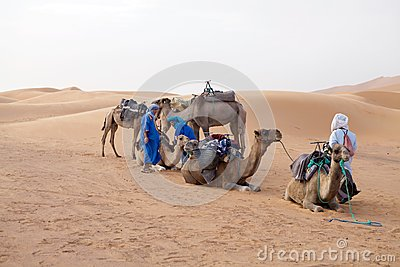 Berber men with camels Editorial Image