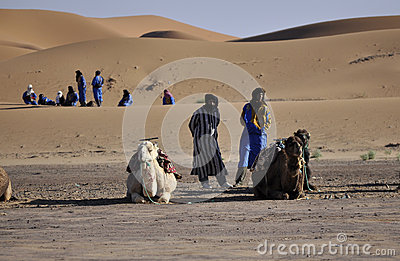 Berbers with camels at dunes, april16,2012 Editorial Image