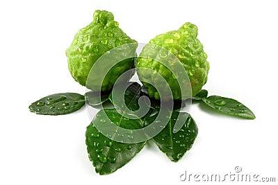 Bergamot and leaves