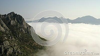 Berghelling met van de de massadekking van pijnboom de bos Dikke witte wolken reusachtige grote ruimte stock video