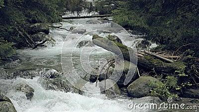 Bergstroom met stroomversnelling Nevelige geheimzinnige beek stock footage