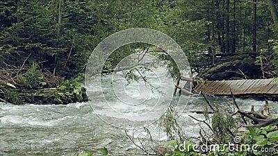 Bergstroom met stroomversnelling Nevelige geheimzinnige beek stock videobeelden