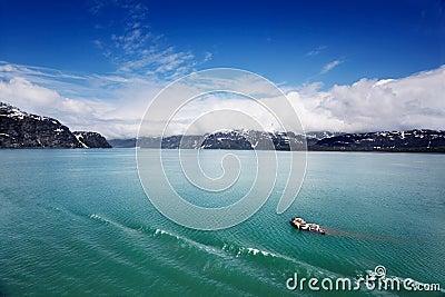 Bergy bits in Glacier Bay