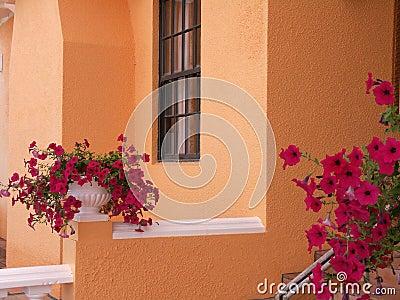 Bermuda Home Detail