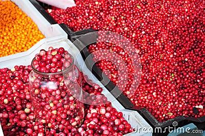Berries at farmer s market