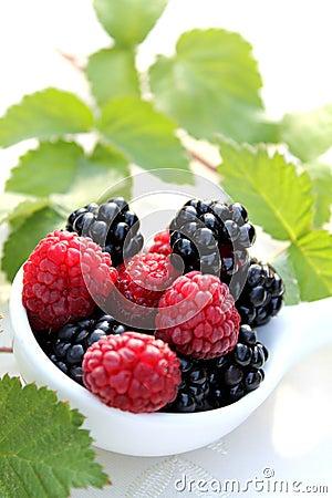 Berries for jam